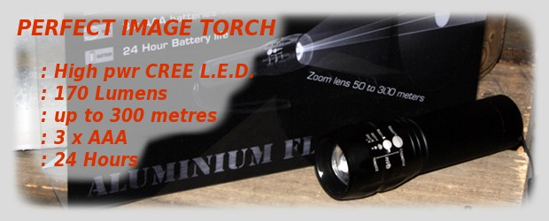 Perfect Image Cree torch